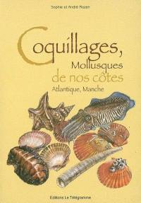 Coquillages, mollusques de nos côtes