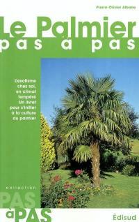 Le palmier pas à pas