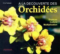 A la découverte des orchidées