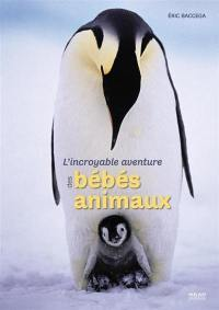 L'incroyable aventure des bébés animaux