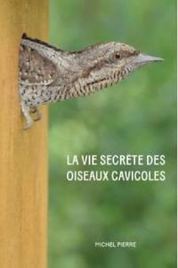 La vie secrète des oiseaux cavicoles