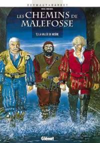 Les chemins de Malefosse. Volume 3, La vallée de misère