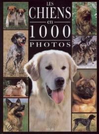 Les chiens en 1.000 photos