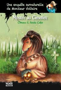 Une enquête surnaturelle de monsieur Voltaire, Mystère au cimetière