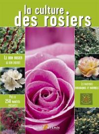 La culture des rosiers