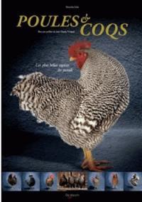Poules & coqs