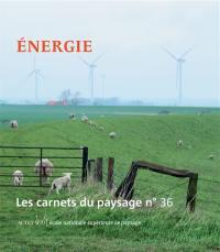 Carnets du paysage (Les). n° 36, Energie