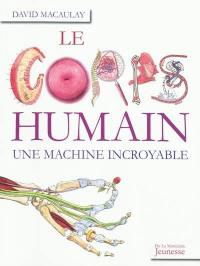 Le corps humain, une machine incroyable