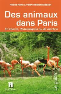 Des animaux dans Paris