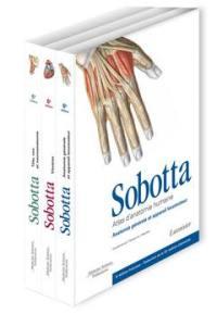Atlas d'anatomie humaine, Atlas d'anatomie humaine