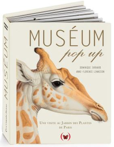 Muséum pop-up
