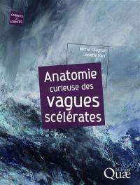 Anatomie curieuse des vagues scélérates