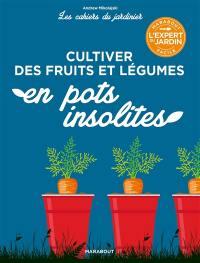 Cultiver des fruits et légumes en pots insolites