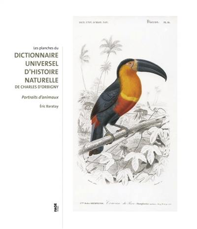 Les planches du Dictionnaire universel d'histoire naturelle de Charles d'Orbigny