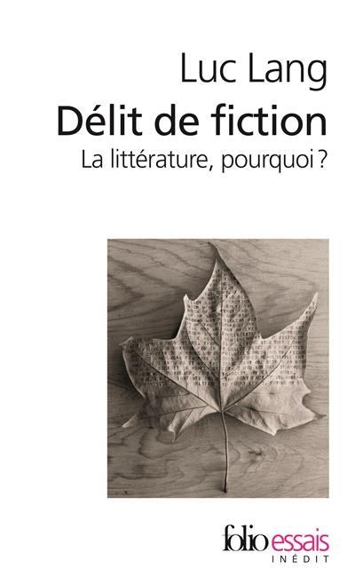 Délit de fiction