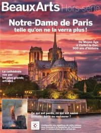 Notre-Dame de Paris telle qu'on ne la verra plus !