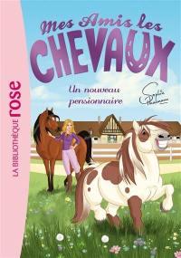 Mes amis les chevaux. Vol. 1. Un nouveau pensionnaire