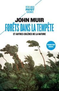 Forêts dans la tempête