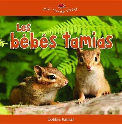 Les bébés tamias
