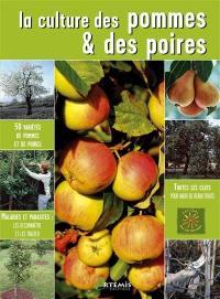 La culture des pommes et des poires