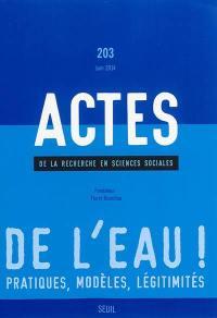 Actes de la recherche en sciences sociales. n° 203, De l'eau !