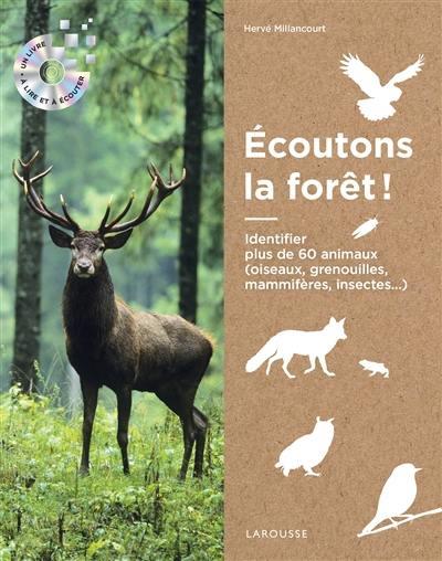 Ecoutons la forêt !