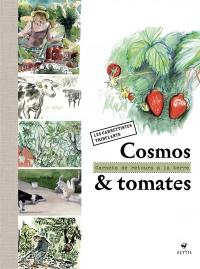 Cosmos & tomate