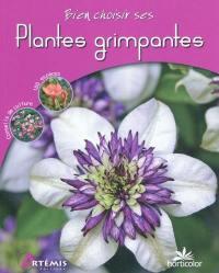 Bien choisir ses plantes grimpantes