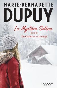 Le mystère Soline. Vol. 3. Un chalet sous la neige