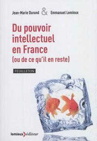 Du pouvoir intellectuel en France (ou de ce qu'il en reste)
