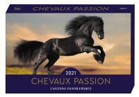 Chevaux passion 2021