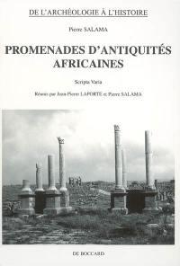 Promenades d'antiquités africaines
