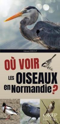 Où voir les oiseaux en Normandie ?