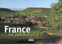 France, un fabuleux pays !