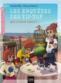 Les enquêtes des Tip-Top. Volume 6, Qui a enlevé Odilon ?