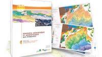 Synthèse géologique et géophysique des Pyrénées