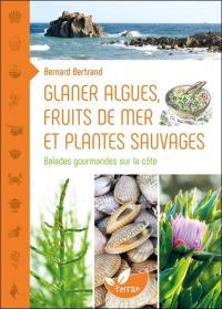 Glaner algues, fruits de mer et plantes sauvages
