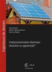 L'autoconsommation électrique : révolution ou opportunité ?