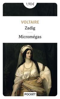 Zadig; Suivi de Micromégas