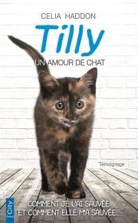 Tilly, un amour de chat