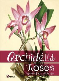 Orchidées, roses