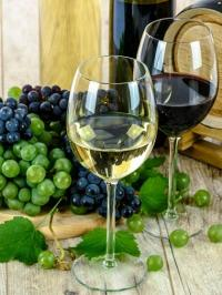 La sélection vins du Comptoir : sous les pavés la vigne !